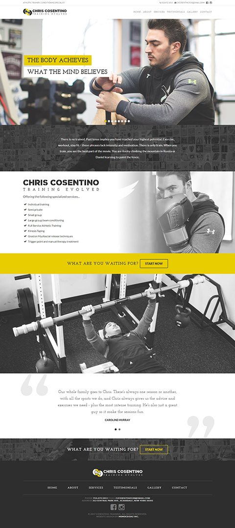 Cosentino Training website homepage